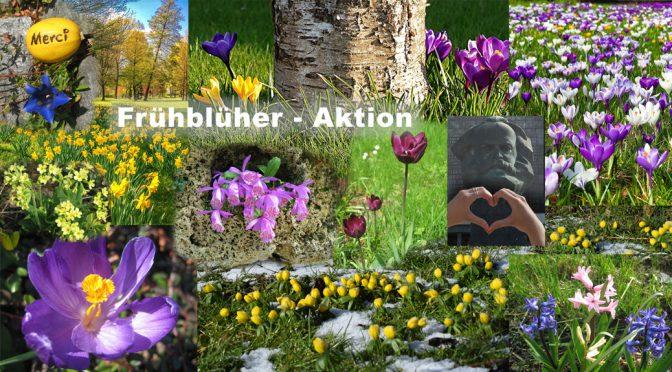 Frühblüher-Mitmach-Aktion